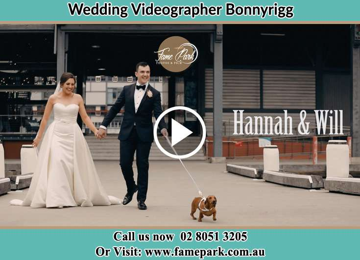 Bride and Groom walking with their dog Bonnyrigg NSW 2177
