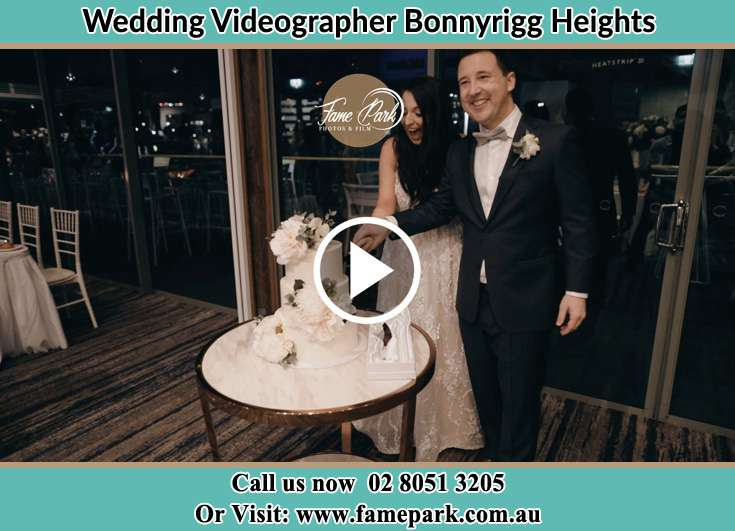 Bride and Groom cutting of cake Bonnyrigg Heights NSW 2177
