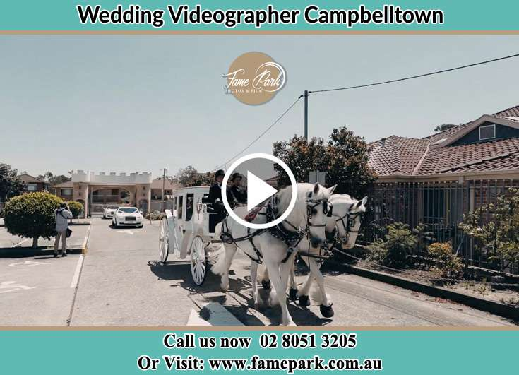 Bride and Groom wedding carriage Camellia NSW 2124